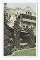Bouganvilla, Hotel Potter, Santa Barbara, Calif (NYPL b12647398-75538).tiff