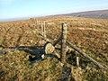 Boundary stone on Robert's Seat - geograph.org.uk - 633078.jpg