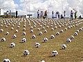Brasilia DF Brasil - Plantação de Bola na Pça. dos Tres Poderes - panoramio.jpg