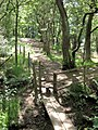 Bridge and stile in to Coppice Wood - geograph.org.uk - 1937578.jpg