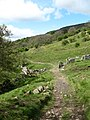 Bridleway below Fremington Edge - geograph.org.uk - 431311.jpg