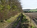 Bridleway towards Rendezvous Plantation - geograph.org.uk - 329259.jpg