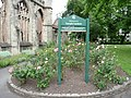 Bristol , Temple Gardens - geograph.org.uk - 1360904.jpg