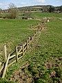 Broken fences - geograph.org.uk - 1220292.jpg