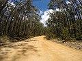 Brooman NSW 2538, Australia - panoramio (132).jpg
