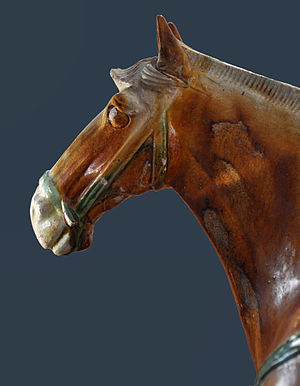 Horse head, Tang Dynasty.