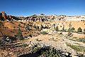 Bryce Canyon (15201929237).jpg