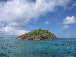 English: Buck Island, St. Croix, USVI Slovenči...