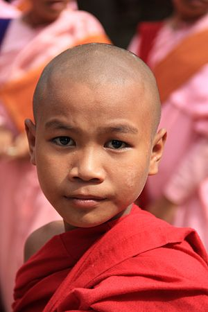Buddhist monk in Myanmar (1068571).jpg