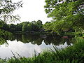 Bullough's Pond, Newton MA.jpg