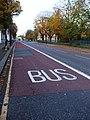 Bus what^ - geograph.org.uk - 1038742.jpg