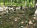 Bushkill Falls - stacks of stones 20200620 120905.jpg