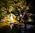 Butchart Gardens - Victoria, British Columbia, Canada (28712111014).jpg