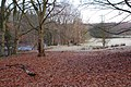 By The River Ayr - geograph.org.uk - 1126713.jpg