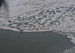 C130 Overflight of Western Alaska villages 111110-G-TM873-558.jpg