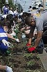 CPO 365 flower planting 150615-N-UP569-089.jpg