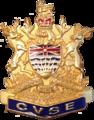 CVSE Badge Cap.png