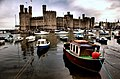 Caernarfon Castle with foreground boats - geograph.org.uk - 1067326.jpg