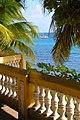 Calle Flamboyant, Esperanza, Vieques, Puerto Rico - panoramio.jpg