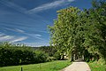 Camí al Castell de Montesquiu - panoramio (1).jpg