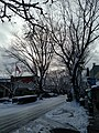 Camas street scene with snow.jpg