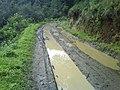 Camino en Aguarrosas - panoramio.jpg