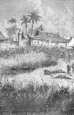 Pescadores Campaign - French troops enter Makung, 31 March 1885