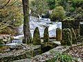 Cascadas del Barosa (Barro)70 (6761868507).jpg