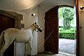 Castle of Pubol Horse.jpg