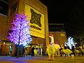 Centro Andino, decortació navideña.JPG