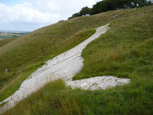 Cherhill White Horse - The white horse from the downs.