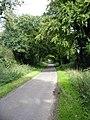 Cheriton Lane - geograph.org.uk - 255436.jpg