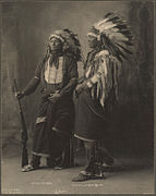 Chief Goes To War, Chief Hollow Horn Bear, Sioux.jpg