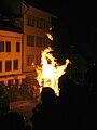 Chienbäse 2009 b.jpg
