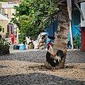 Cidade Velha Cap Vert (210391599).jpeg