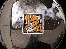 Cigarettes in a pole.JPG