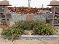 Cimetière de Soucieu-en-Jarrest - Jardin du souvenir.jpg