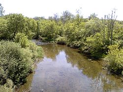 A color photograph of the Clinton River in Macomb County, Michigan