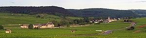 Auxey-Duresses - Panorama of the Vineyards