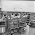 Closing of the Jerome Relocation Center, Denson, Arkansas. A typical truck load of evacuees waiting . . . - NARA - 539796.tif