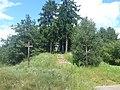 Cmentarz wojenny Zaczopki - panoramio.jpg