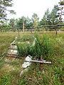 Cmentarz z I wojny światowej lata 1914-1918 Gnieździska 11.JPG