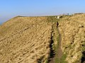 Coast path between Tyneham Cap and Gad Cliff - geograph.org.uk - 696195.jpg