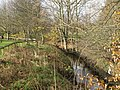 Cockshaw Burn (2) - geograph.org.uk - 1080990.jpg