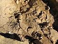 Colada en Cueva Des-Cubierta, Pinilla del Valle, Madrid, Spain.JPG