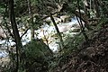 Cold, mountain stream in Rincon de la vieja (24625700566).jpg