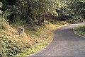 Coll de Miralles 2013 07 24 02 M8.jpg