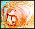 Concentric-eccentric - Flickr - Stiller Beobachter.jpg