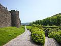 Conwy Castle (7827013974).jpg