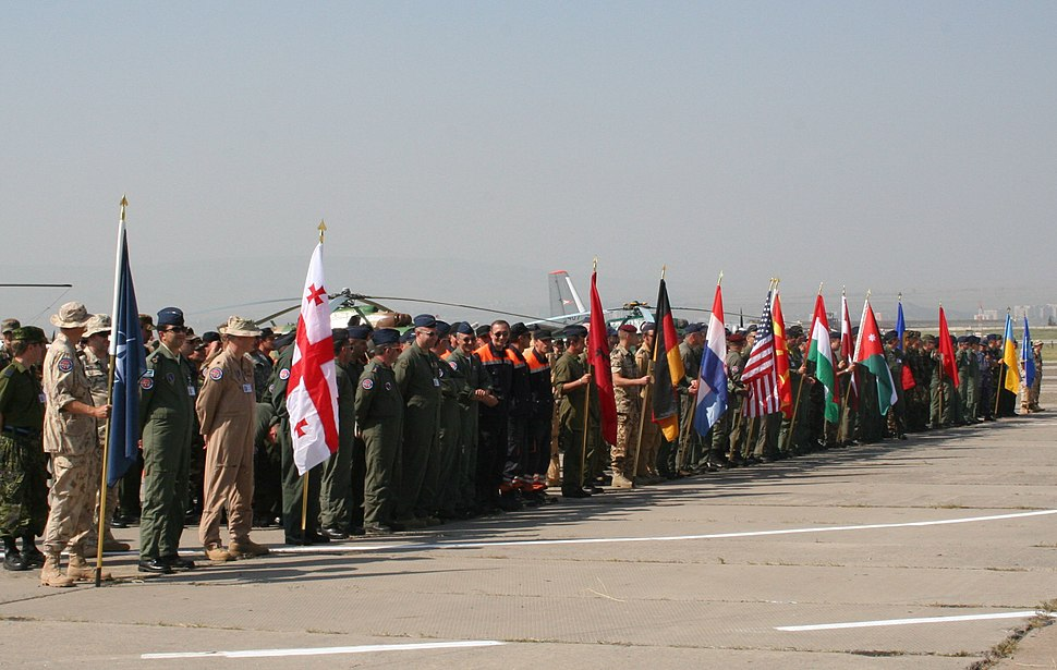 Hundreds of soldiers in military uniforms stand behind a line on a tarmac with 14 flags held by individuals at the front.